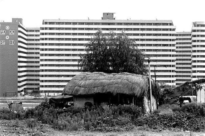 '은마아파트와 초가집', 권태균, 1981