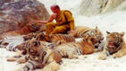 고양이 같이 얌전한 호랑이…137마리 몰수된 사연