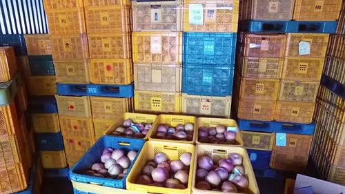메인이미지:창고에 재고 산더미…국산 과일, 왜 안 팔리나
