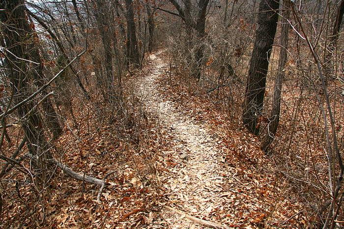 길은 꼬불꼬불 작은 산길을 지나 바다로 이어지고 있었다.