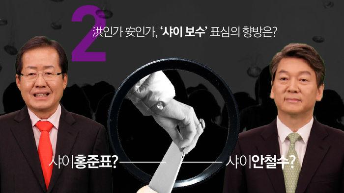 관전포인트② 洪인가 安인가, '샤이 보수' 표심의 향방은?