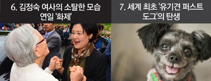 6. 김정숙 여사의 소탈한 모습 연일 '화제' 7. 세계 최초 '유기견 퍼스트도그'의 탄생