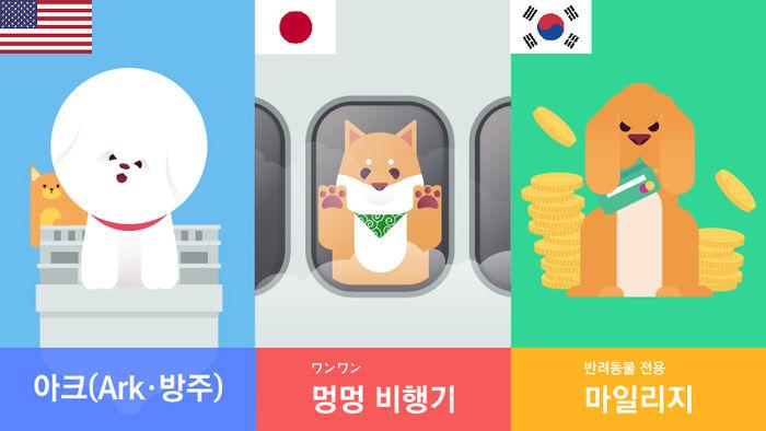 항공사의 반려동물 서비스가 늘고있다