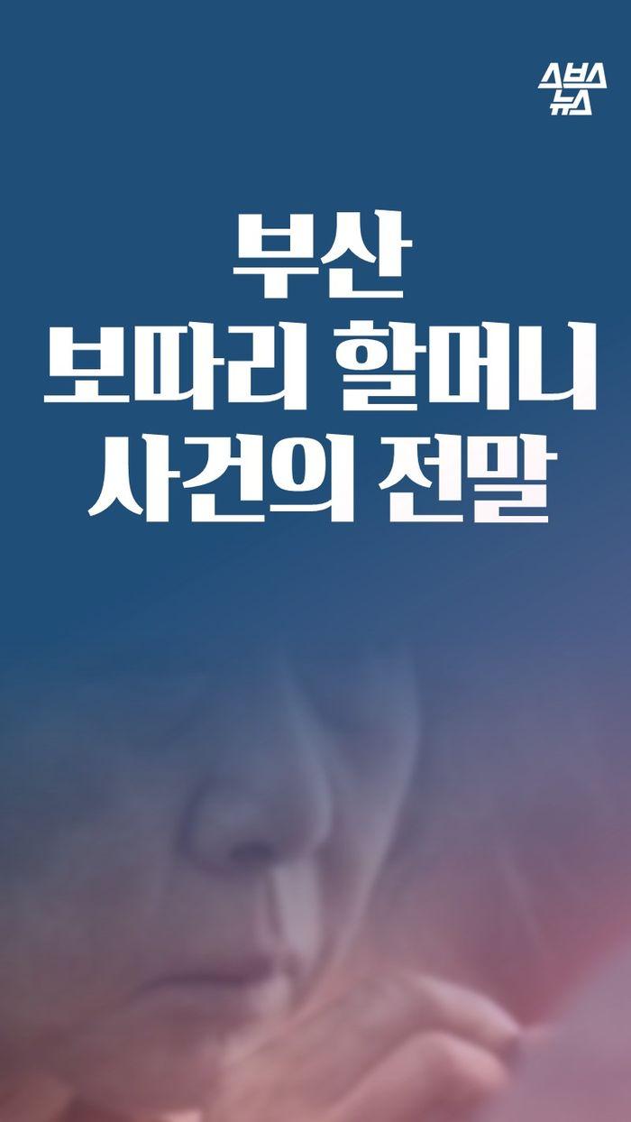 부산 보따리 할머니 사건의 전말