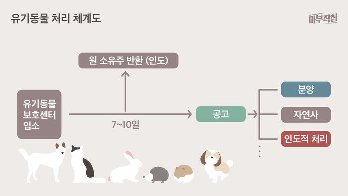 [마부작침] 유기동물 그래프_유기동물 처리 체계도