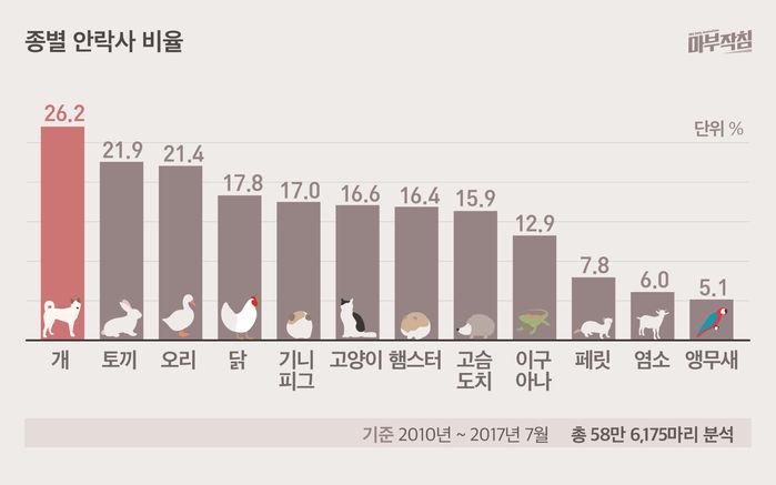 [마부작침] 유기동물 그래프_종별 안락사 비율