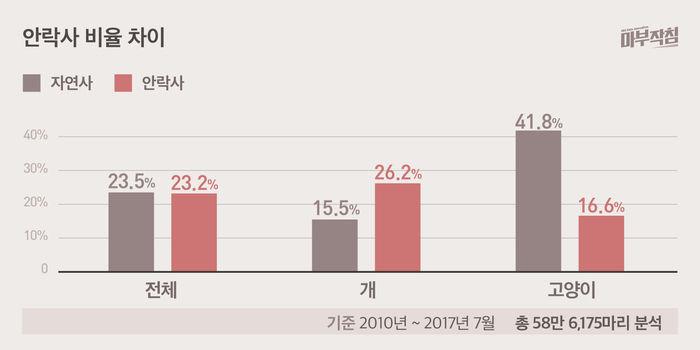 [마부작침] 유기동물 그래프_안락사 비율 차이