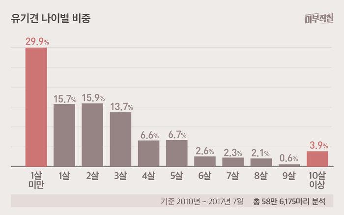 [마부작침] 유기동물 그래프_유기견 나이별 비중
