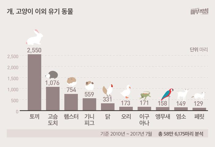 [마부작침] 유기동물 그래프_개 고양이 이외 유기동물