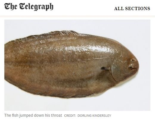 갑자기 입속으로 뛰어든 생선에 기도 막혀 죽을 뻔한 남성