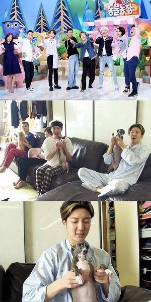 [김재윤의 비하인드] 동물농장×위너, 'REAL 공동육아일기' 관전포인트는?