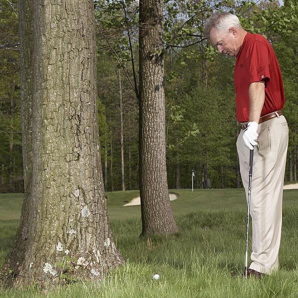 [마인드골프] 나무 근처에서 치는 트러블 샷이 잘 맞는 이유