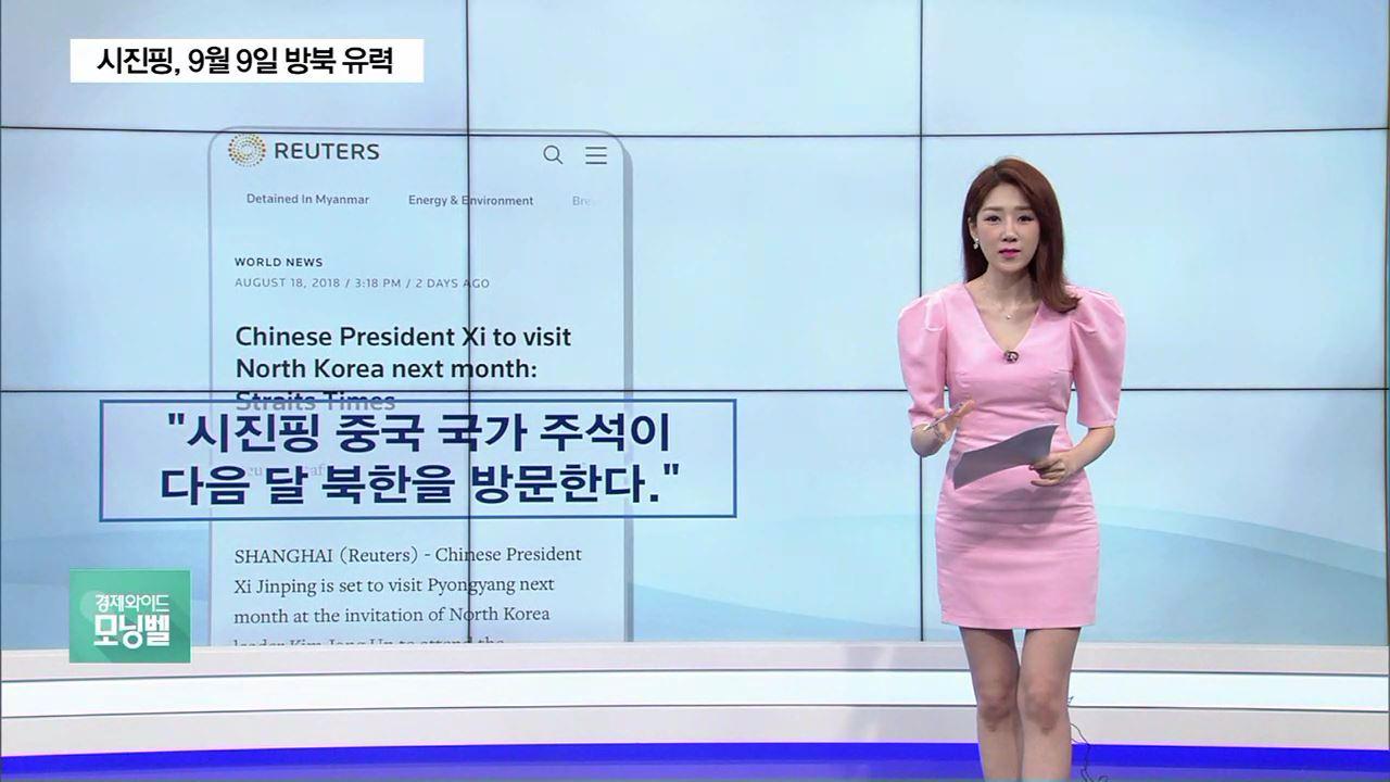 """시진핑, 9월 9일 방북 유력…""""김정은 직접 초청"""""""