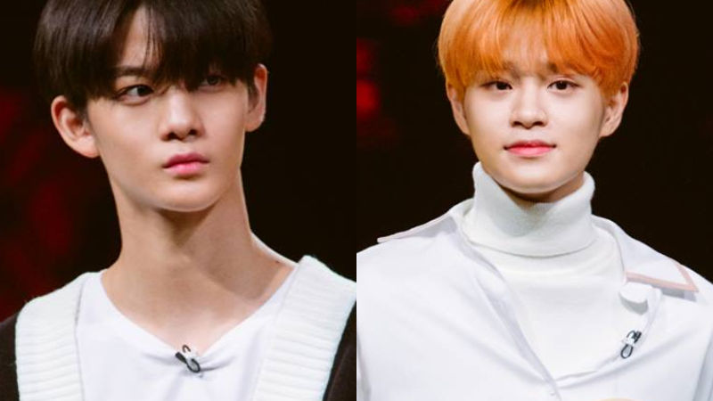 기사 대표 이미지:[SBS Star] Bae Jin Young & Lee Dae Hwi Decide Not to Take the College Entrance Exam This Year