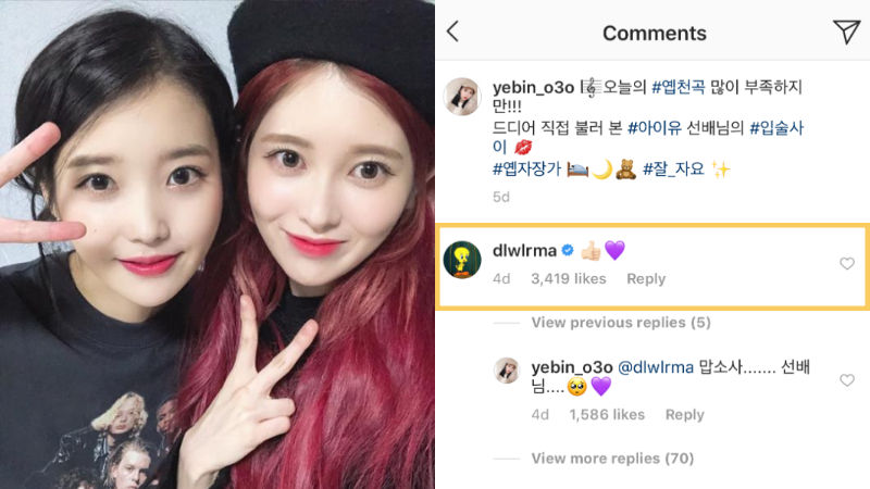 기사 대표 이미지:[SBS Star] IU to Show Support for DIA YEBIN After She Receives a Mean Comment