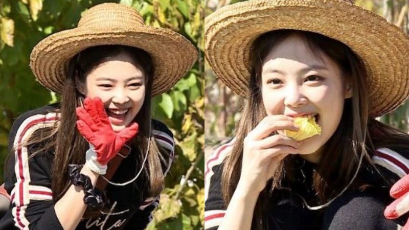 기사 대표 이미지:[SBS Star] JENNIEs Appearance in Village Survival, the Eight 2 Is No Longer Happening