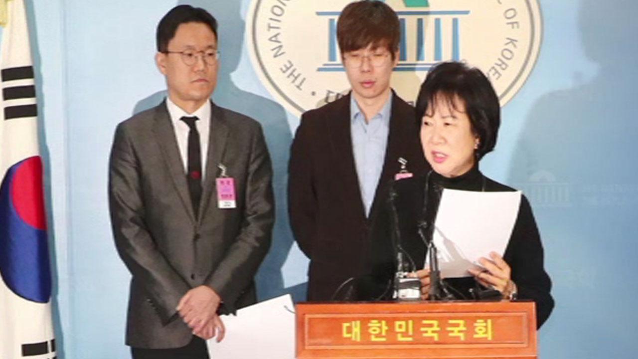 아이콘 공방 부른 손혜원 의혹…여당서도 '이익충돌' 지적