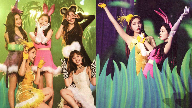 기사 대표 이미지:[SBS Star] Red Velvet Dresses up as Animals That Look like Them!