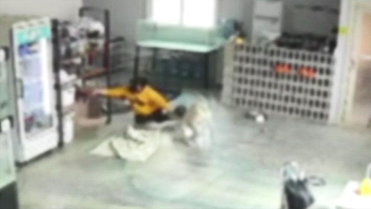 맹인 개에게 물린 후 6 번의 수술 … Dog Cafe Albasaeng Tragedy