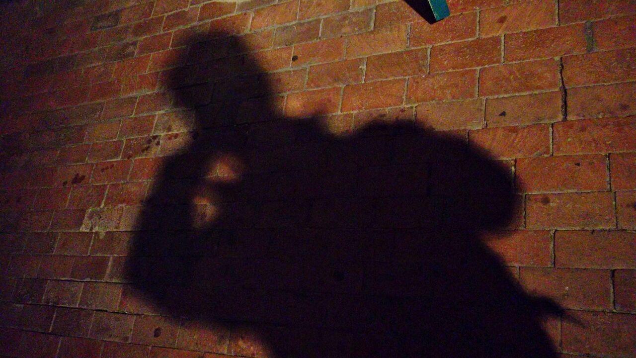 기사 대표 이미지:골목 숨어 있다가 여성 앞에 노상 방뇨…20대 男 벌금형