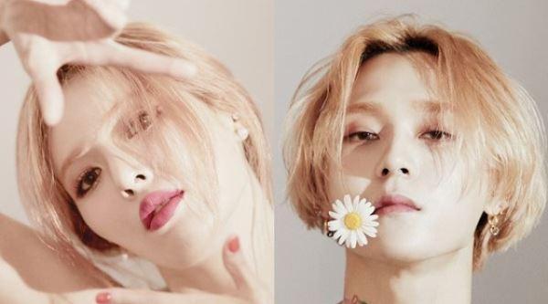 현아♥이던, 11월5일 동시 컴백…핑크빛 선의의 경쟁[공식]
